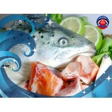 空運鮭魚-生魚片等級!半顆鮭魚頭(剁塊)